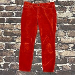 J. Crew Toothpick Pants